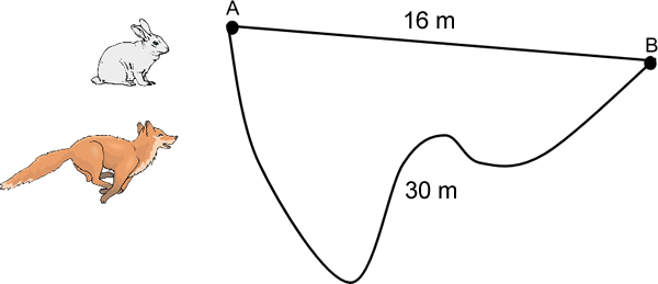 Position Distance And Displacement Physics Pinterest