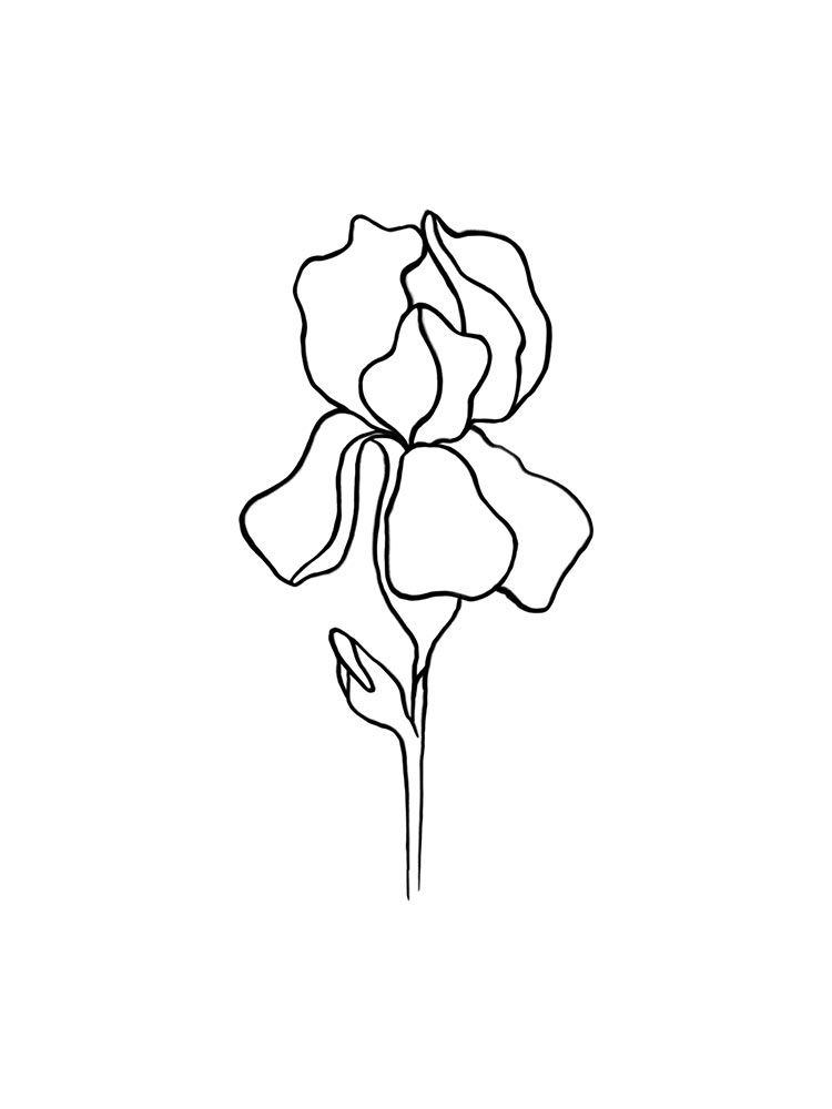 Line Art Printable Iris Print Line Art Botanical Prints Iris Drawing Iris Tattoo Line Art Flowers