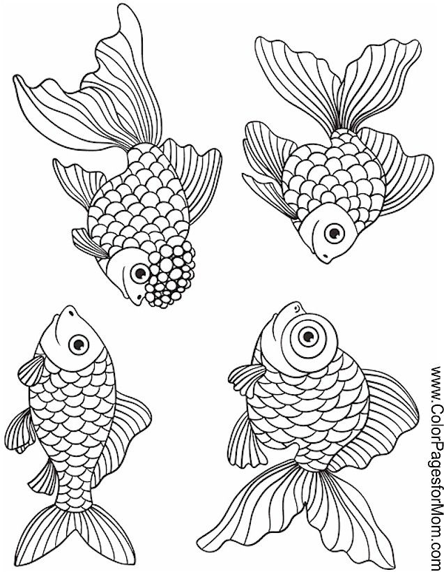 coloring pages fish ocean - photo#46
