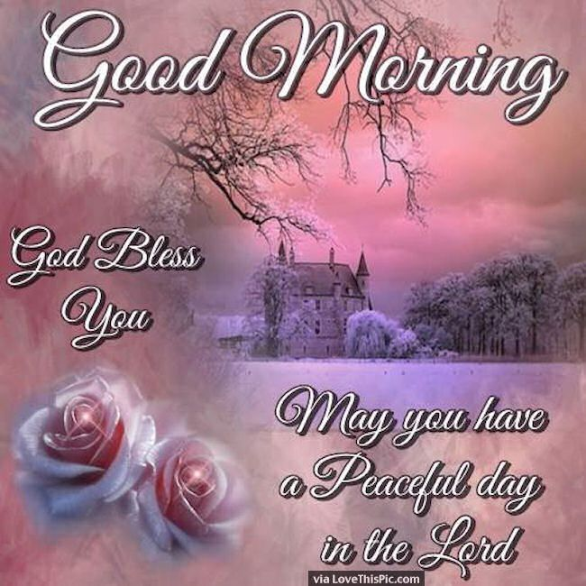 Good Morning May You Have A Peaceful Day In The Lord morning good