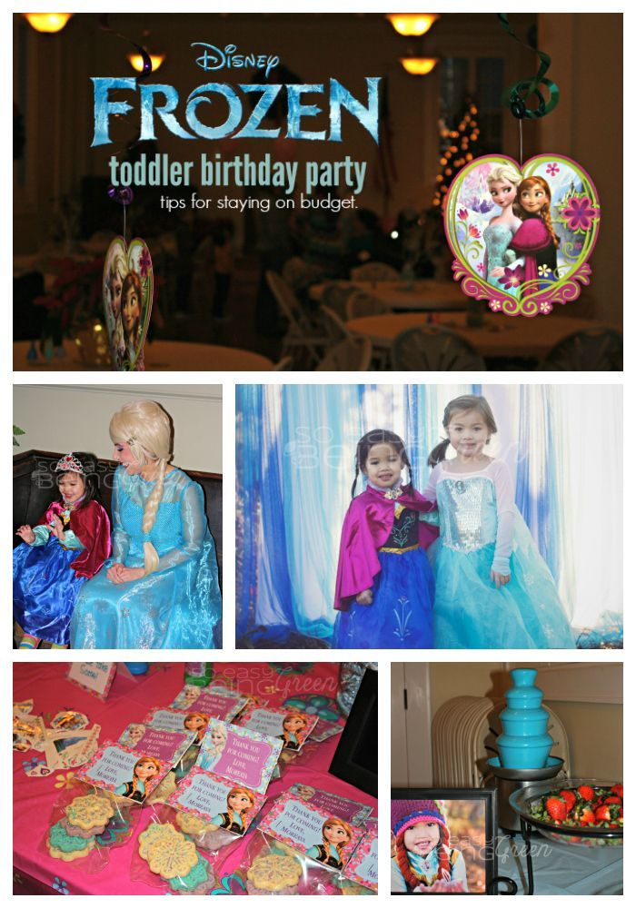 Budget Friendly FROZEN Birthday Party Budgeting, Birthdays and Craft
