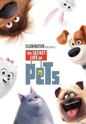 The Secret Life Of Pets Full Movie Sub Indo : secret, movie, Secret, Pets?, Movie,, Pets,