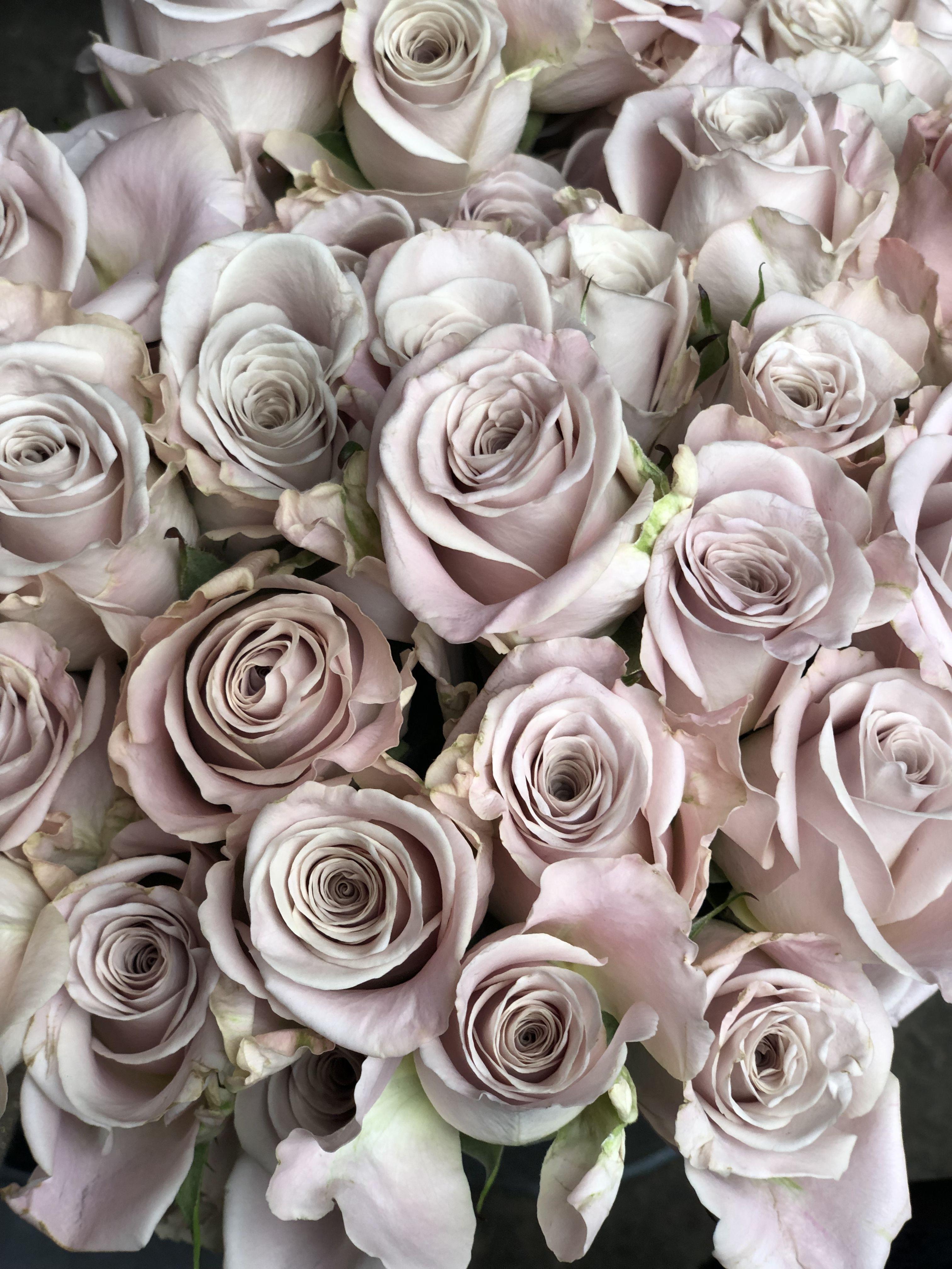 Wedding flower menta rose Цветы, Флористика, Работы