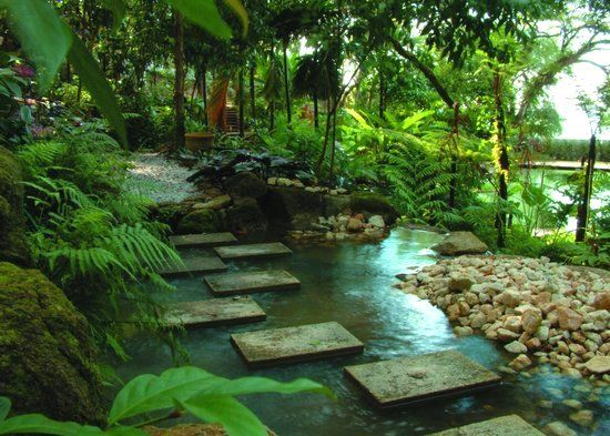 Tropical Home Garden Design Ideas