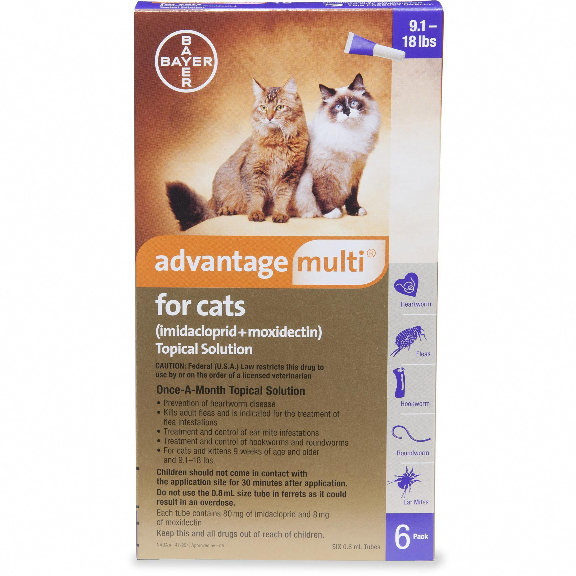 Cats Broadway Heartworm, Flea prevention for cats, Pet