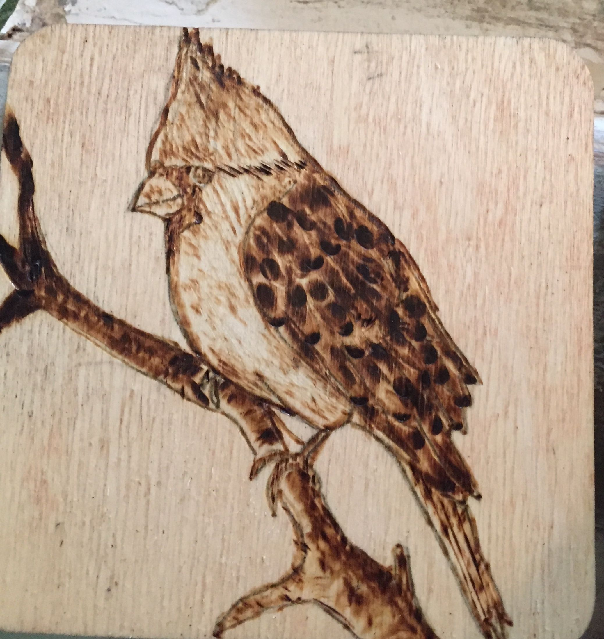 50+ Arts and crafts for adults argos information