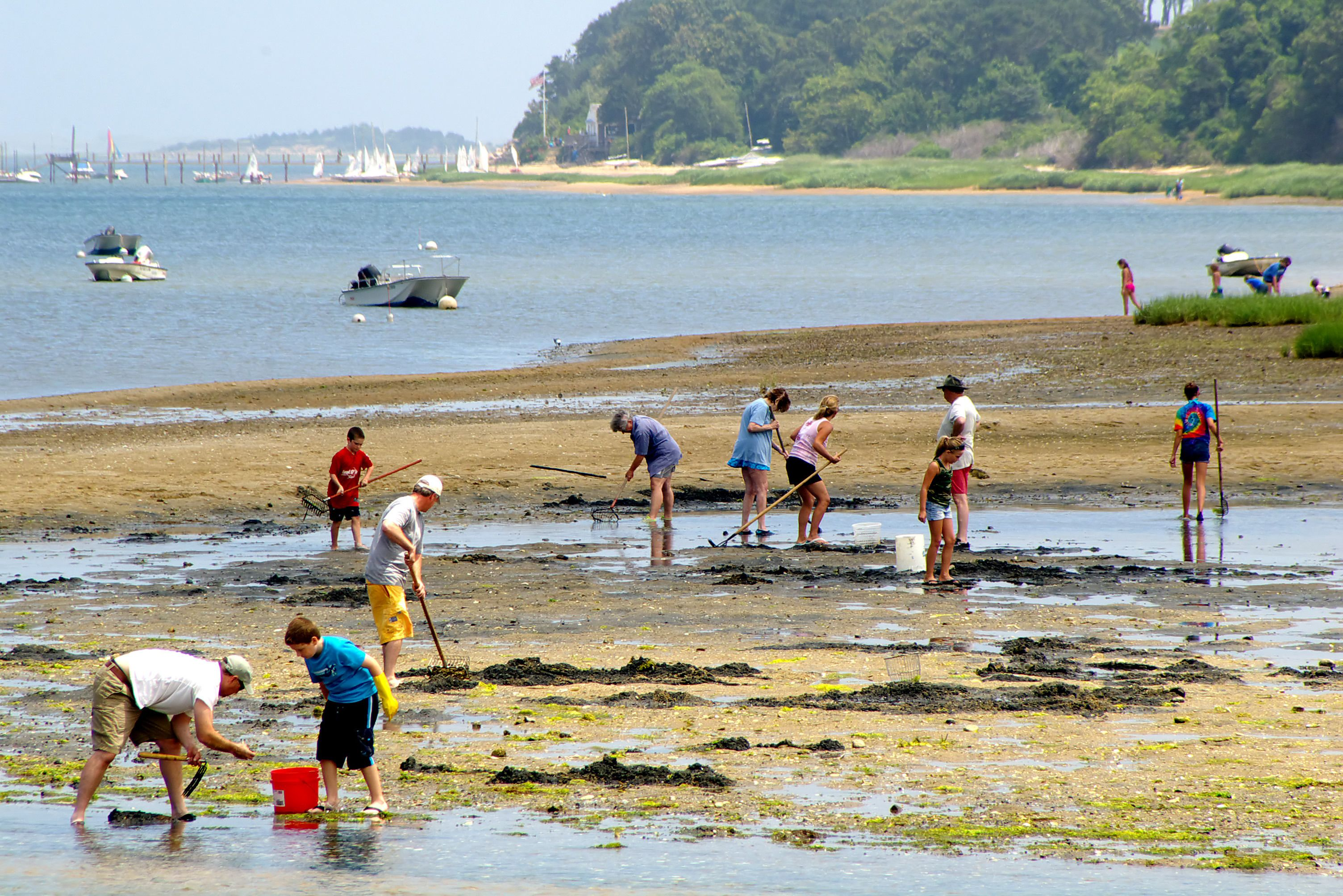 Family Shellfishing Day On Pleasant Bay