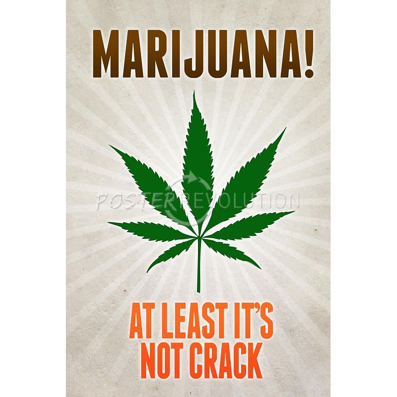 Marijuana! At Least It's Not Crack - No its not. A couple of states just legalized it, and it has many medicinal uses! :P