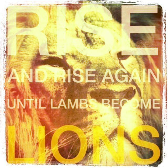 Rise and rise again until Lambs become Lions.... I want this as a tattoo... Means never give up! ❤