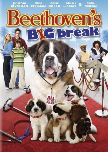 Especialistas Confirmam Que Filmes Com Cachorros Aumentam A