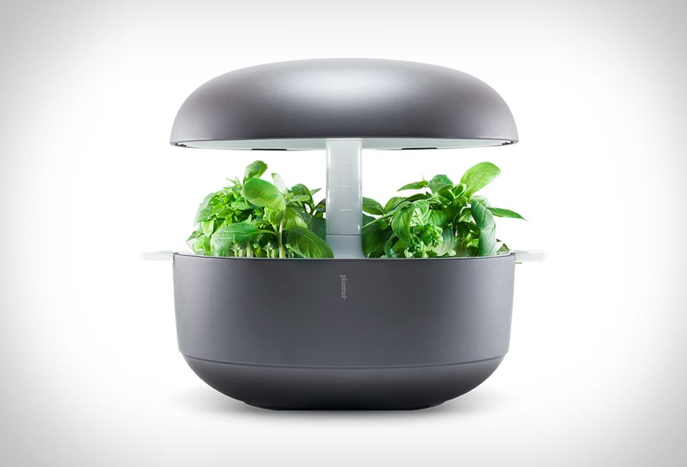 das mini gew chshaus plantui smart garden gadgets a musthave for everybody in 2019. Black Bedroom Furniture Sets. Home Design Ideas