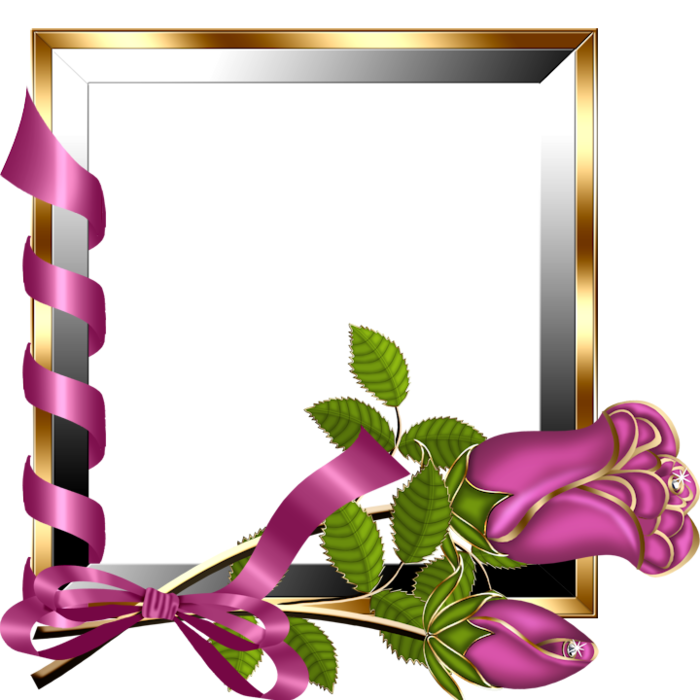 Gold and Silver Transparent Frame with Pink Roses