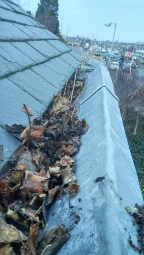 Just Because You Cannot See Inside Your Gutters Doesnt Always Mean They Are Fine Call Edinburgh Gutter Cleaning C Edinburgh Cleaning Gutters Cleaning Companies
