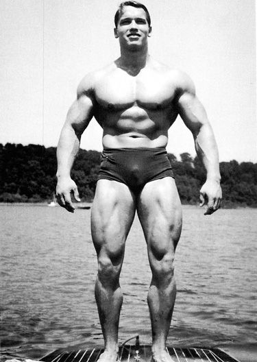 Pin by Olympia on Arnold Schwarzenegger Pinterest Arnold - fresh arnold blueprint day 19