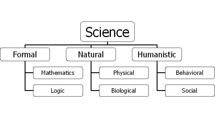 The Branches of Science Science – Branches of Science Worksheet