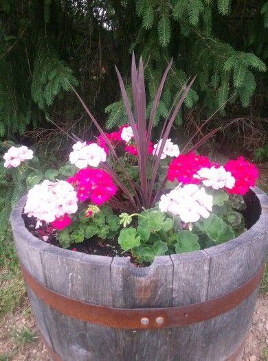 Half Whiskey Barrel Planters Fairy Gardens And Garden