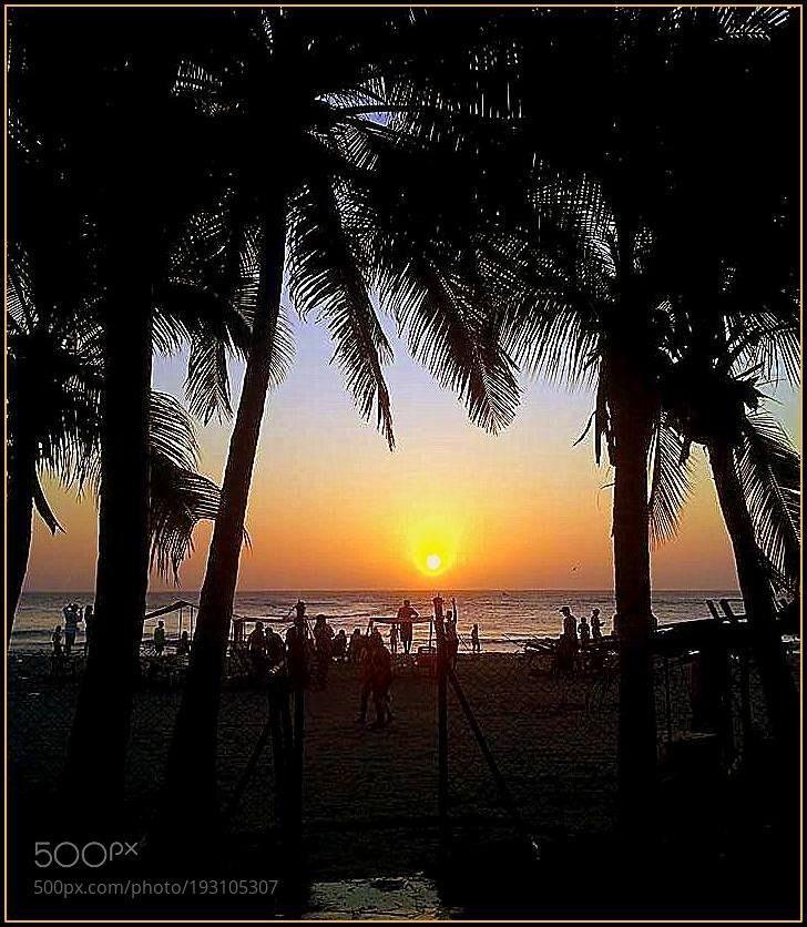 #photography Tramonto tra le palme sul mare di Cartagena. by gianluigibonomini https://t.co/OhKqrnDrWN #followme #photography