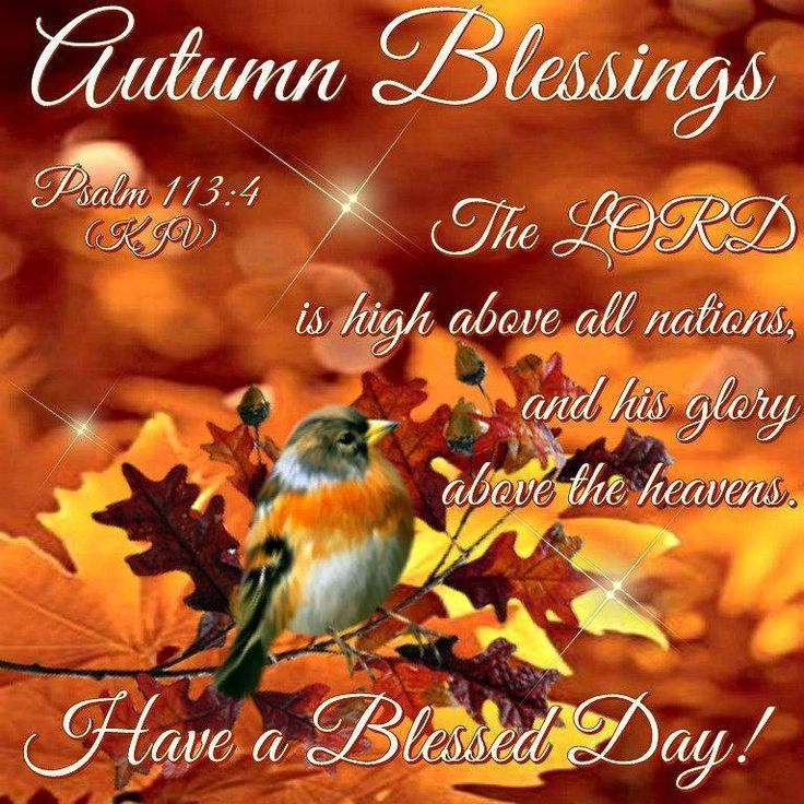 Fall greetings sayings imagenesmy pin annemarie hebert on have a beautiful blessed day friends jpg 736x736 fall greetings sayings m4hsunfo