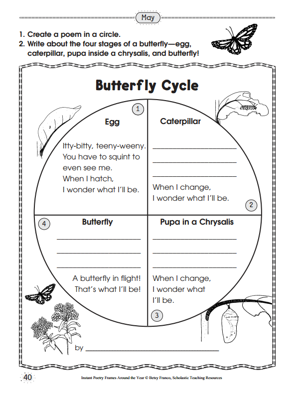 1000+ images about life cycle butterfly on Pinterest