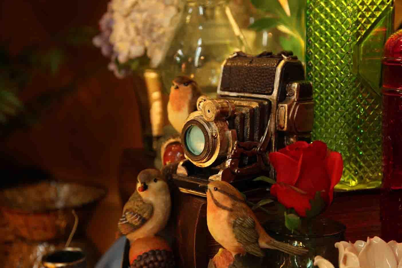 cute camera bank