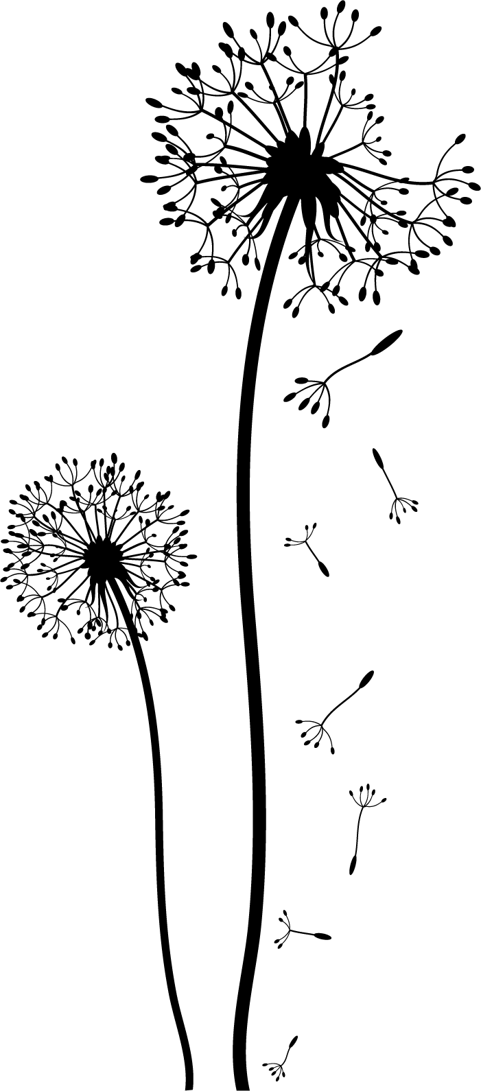 dandelion wall sticker - Google pretraživanje