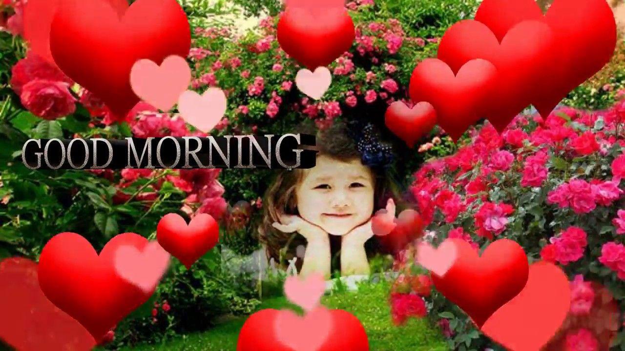 Whatsapp Status Video 2018 Good Morning Video Songs Download Youtube Good Morning Video Songs Good Morning Gif Good Morning Song