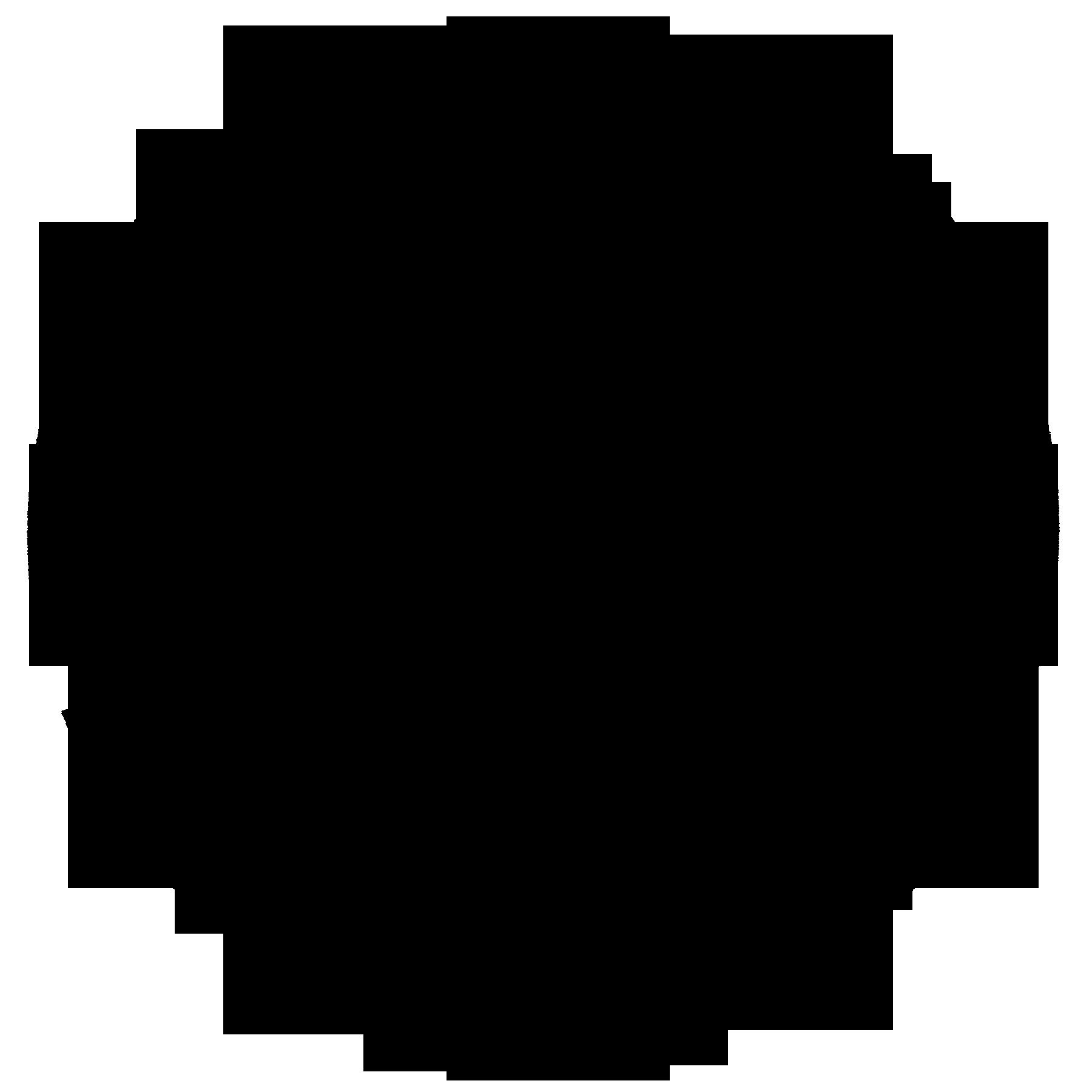 The north face logo, North face logo