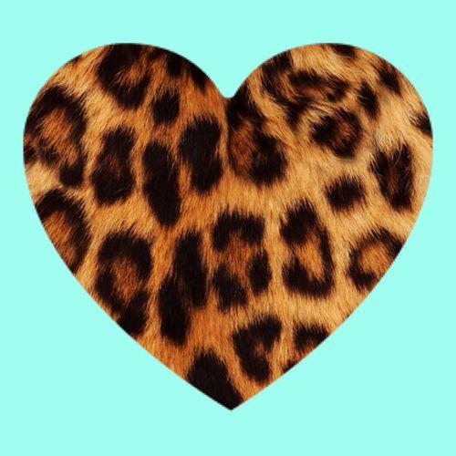 Leopard Heart ❤️ uploaded by Khana Evans on We Heart It