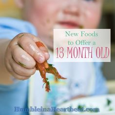 One year olds need to be introduced to new foods, too! This month my 13 month old tried mushrooms, eggplant, and black olives.