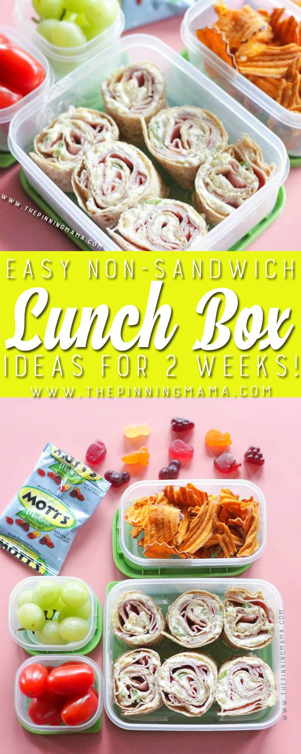 hummus pita lunch box idea for kids just one of 2 weeks worth of