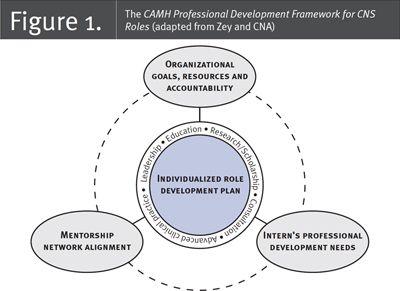 Fig 1  Nursing Leadership 29 3  Capacity Building through a