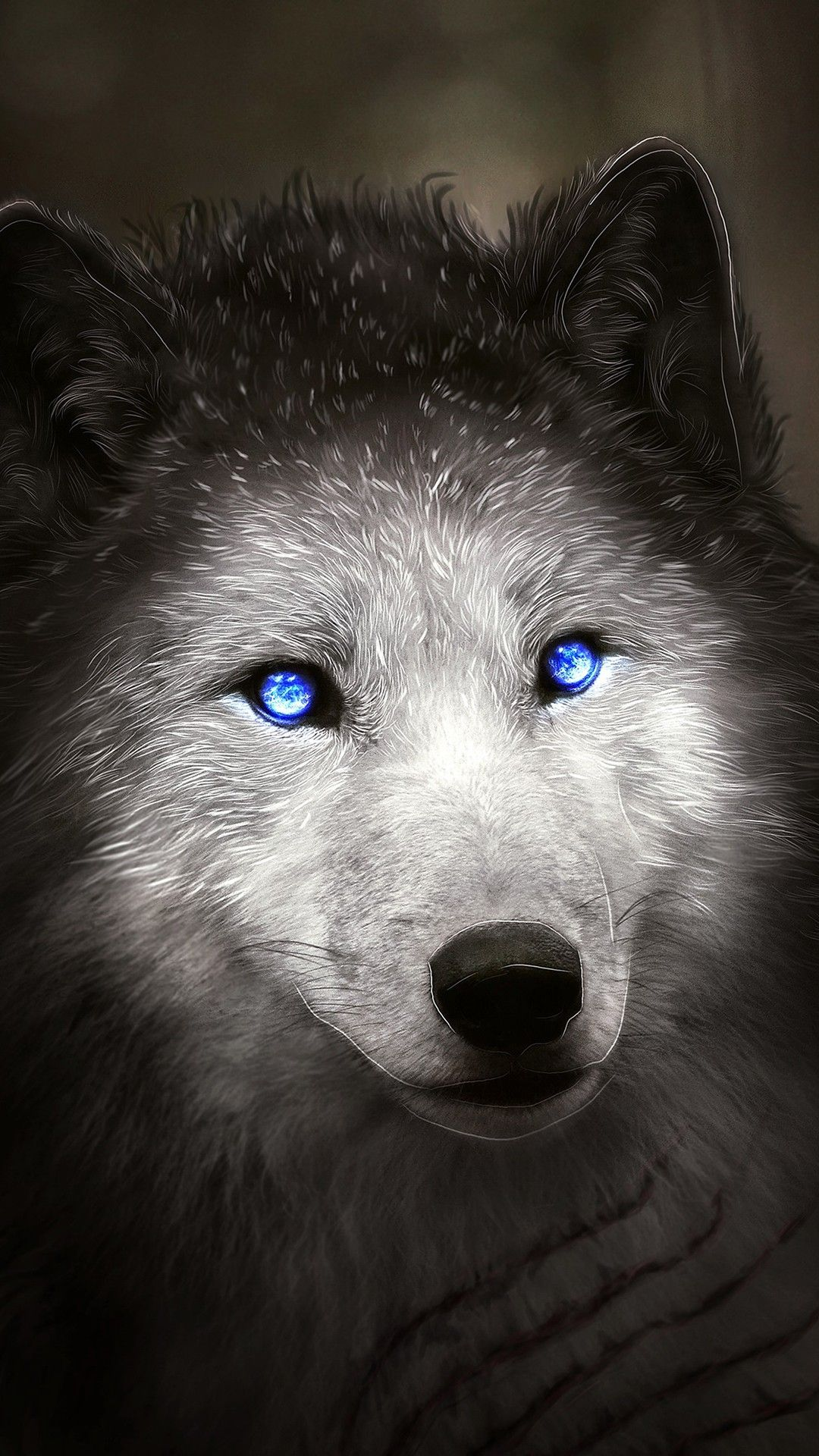 Misc Wolf With Blue Eyes Wallpapers Wolf With Blue Eyes Wolf Eyes Blue Eyed Dog
