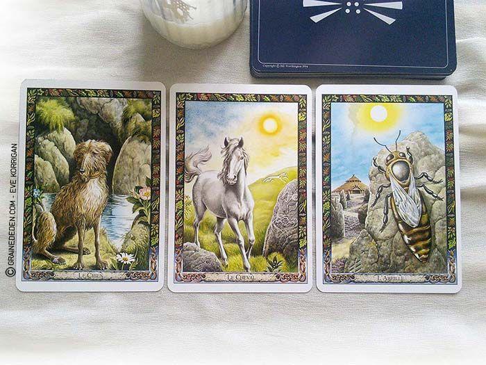 L Oracle Des Druides De Philip Et Stephanie Carr Gomm Tarot Carte Jeux De Tarot Tarot
