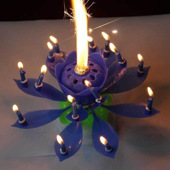 Lotus Candle Just An Idea
