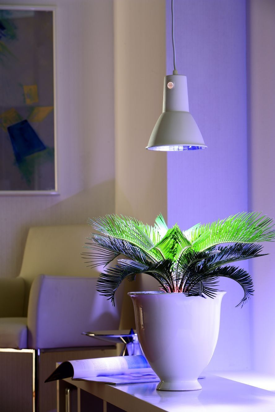 Biogreen Lum151 Gb 15W Energy Saving Plantlight L15 640 x 480