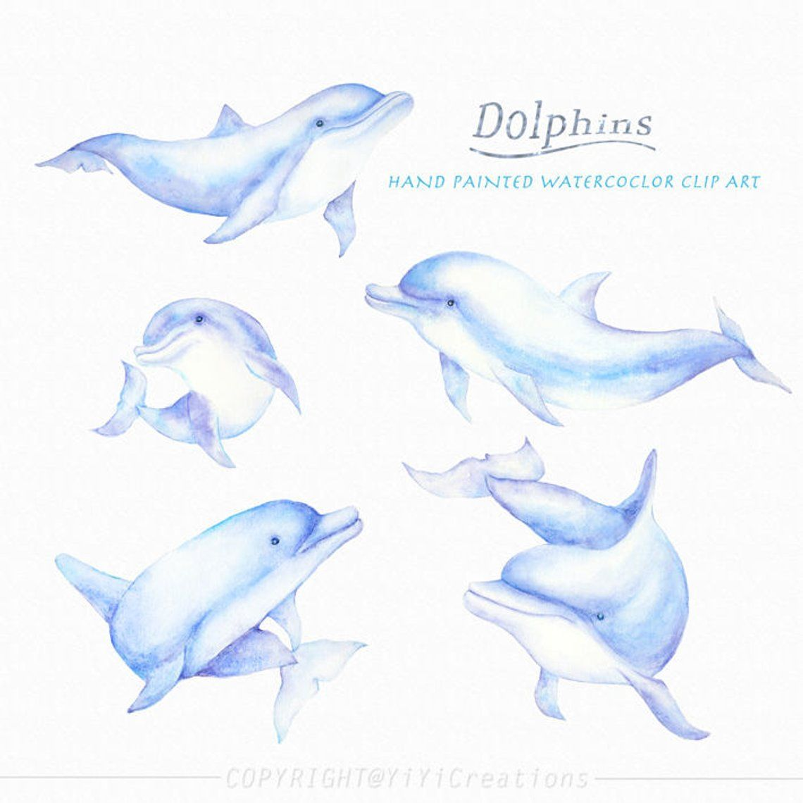 Watercolor Hand Painted Sea Creature Dolphins Clipart Mom And Etsy Dolphin Drawing Dolphin Painting Dolphin Clipart