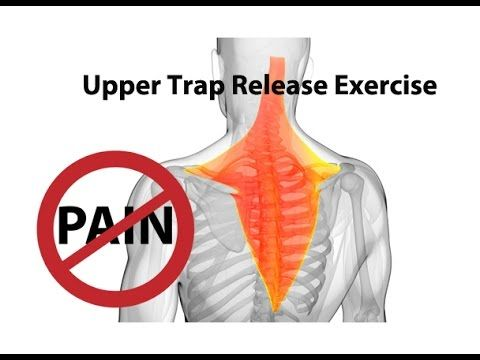 Rhomboid Muscle Pain Causessymptomstreatment Reliefexercisesprevention Improve Your Health