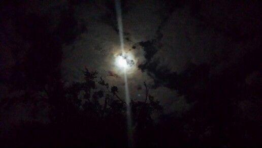 East Texas moon.