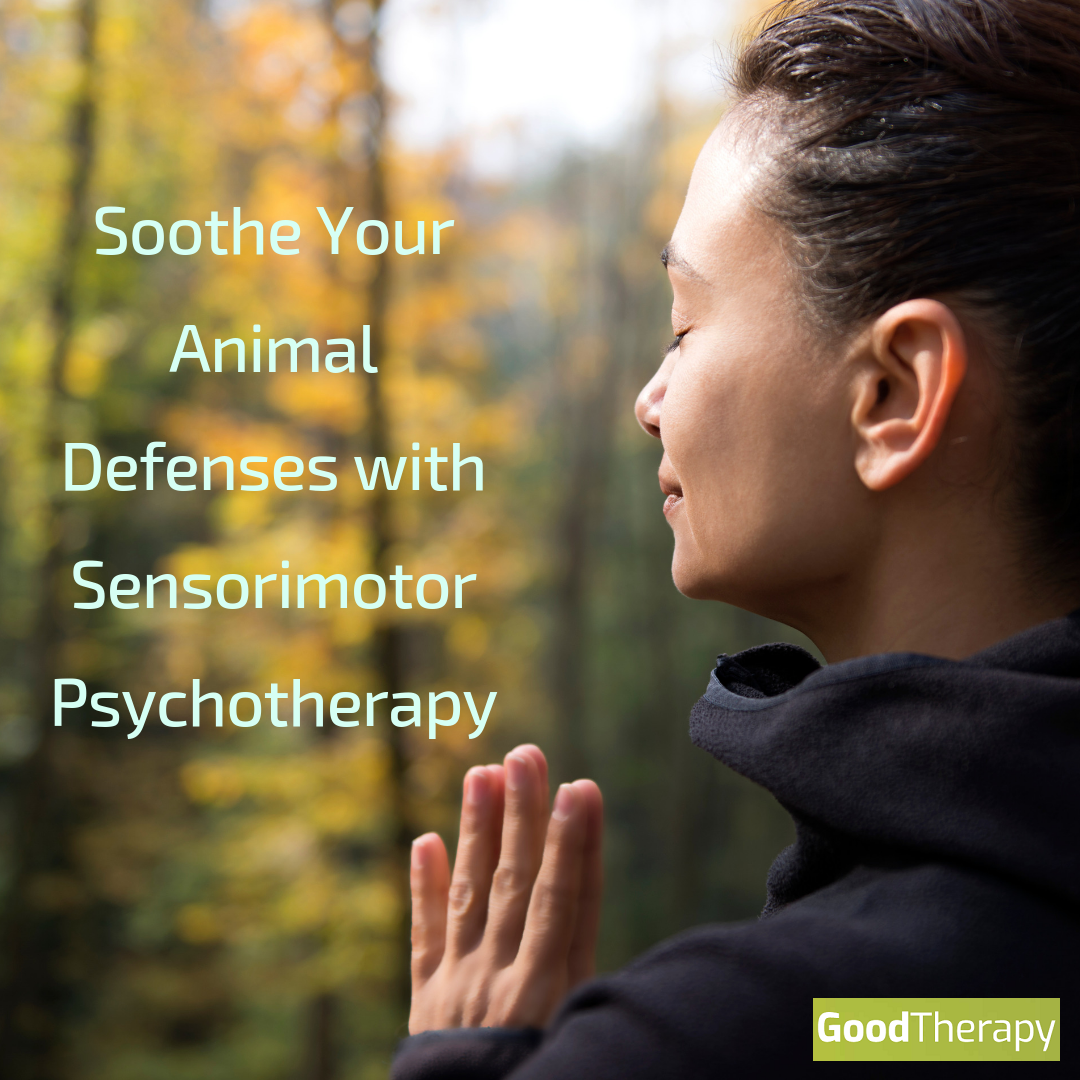 Soothe Your Animal Defenses With Sensorimotor