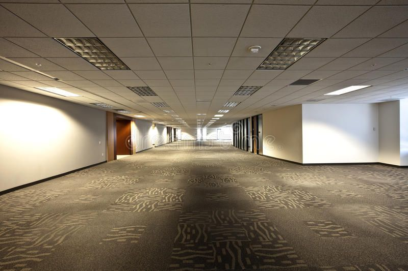 Empty Office Space. Empty office building in need of tenants. Large space  for cu , #ad, #Space, #office, #Empty, #Office, #b… | Office space, Office  building, Empty