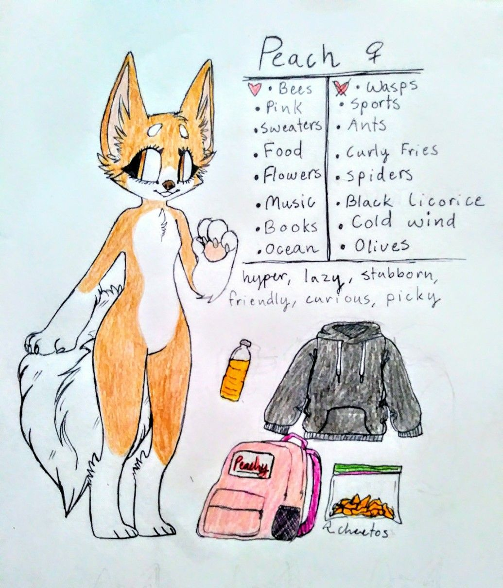 Peach I Actually Finished It 0 So This Girl Is A Wolf Shiba Inu Mix Has A Big Fluffy Tail And Owns A Vintage Camper Furry Girls Drawing Prompt People Art