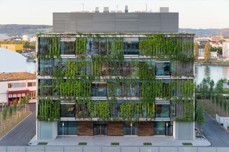 Image result for novartis fassadenbegr nung landscape architecture laubengang architektur - Grune architektur ...