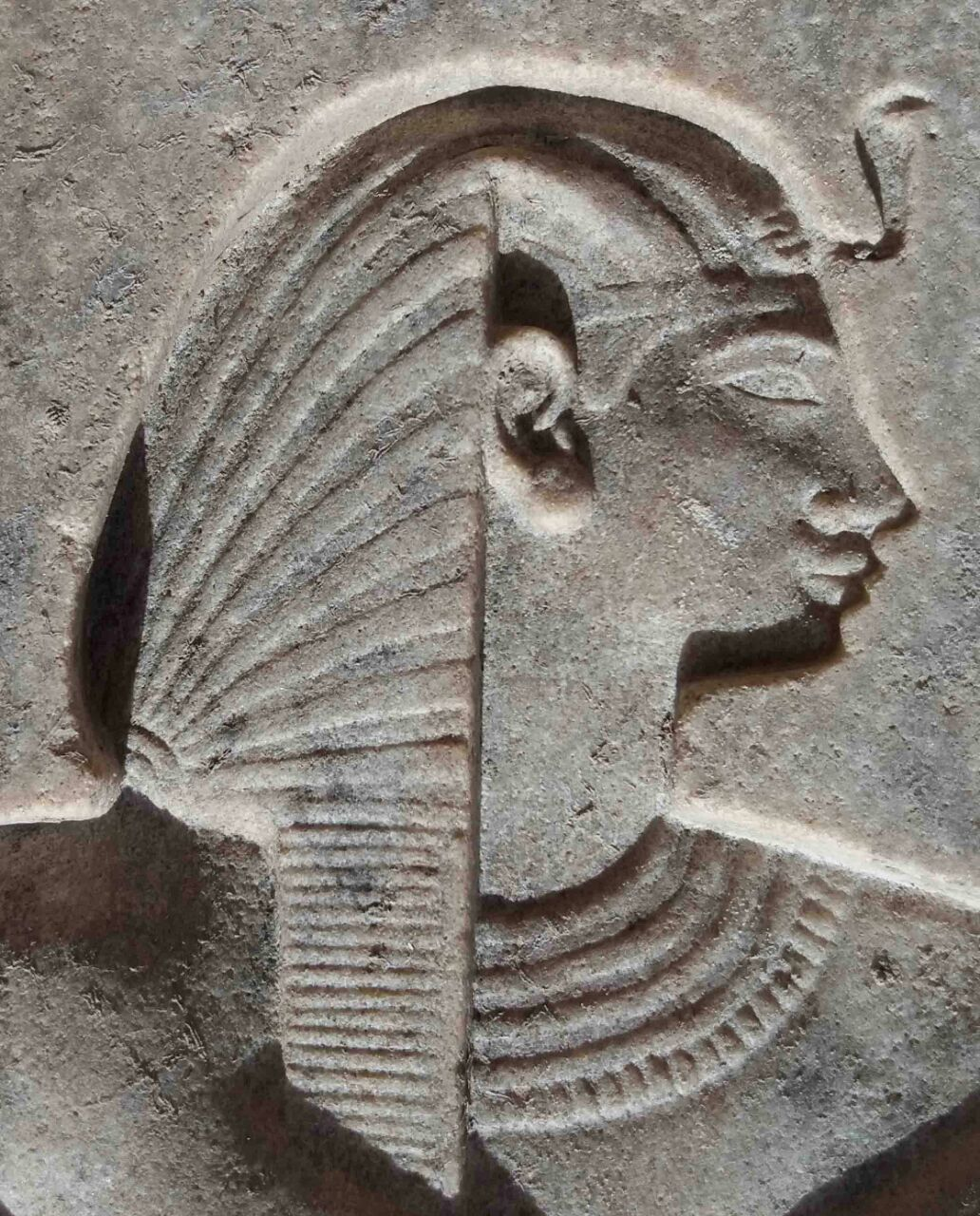 Luxor Times Magazine All The Latest News Views And Articles From Luxor And All Over Egypt Concerning History Culture And To Egypt Tourism Egypt Lion Sculpture