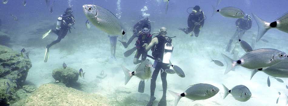 diving at fethiye turkey oludeniz