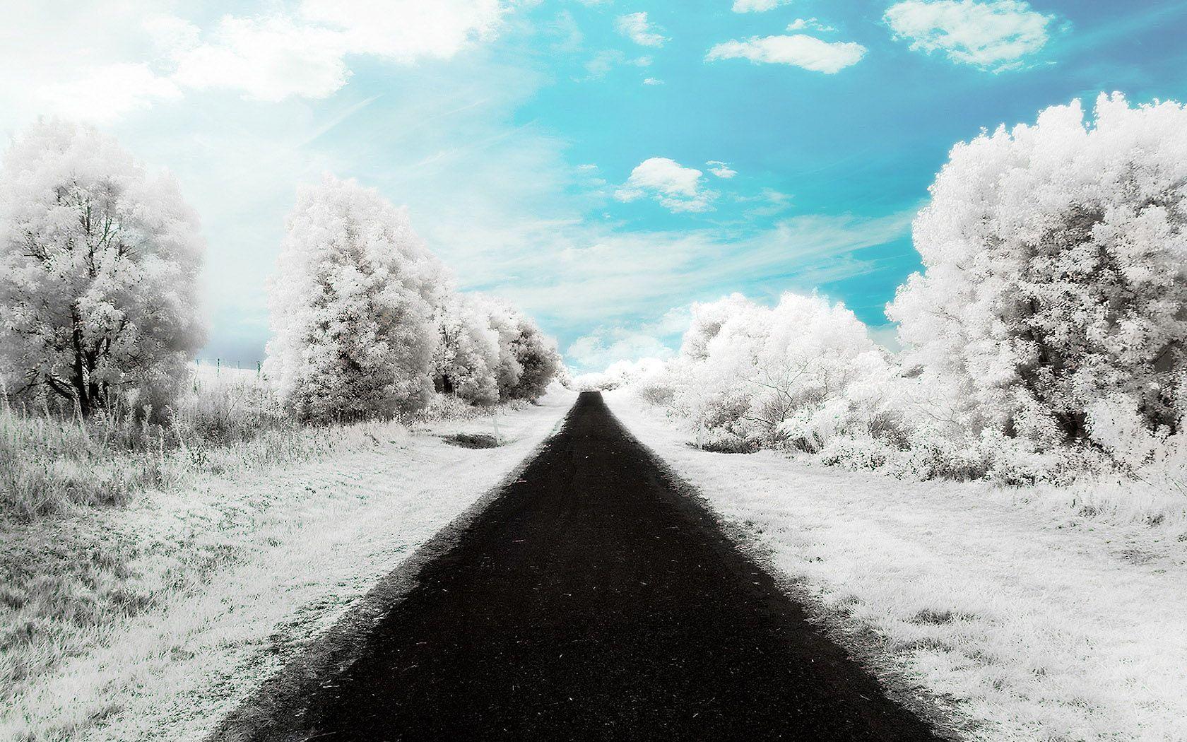 Winter Road S Wallpaper X