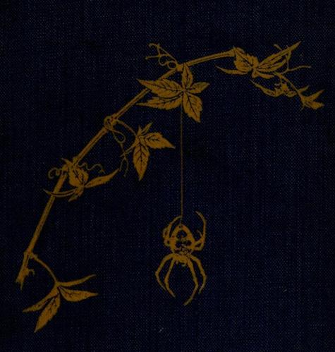 Spiderland. 1912. Cover art