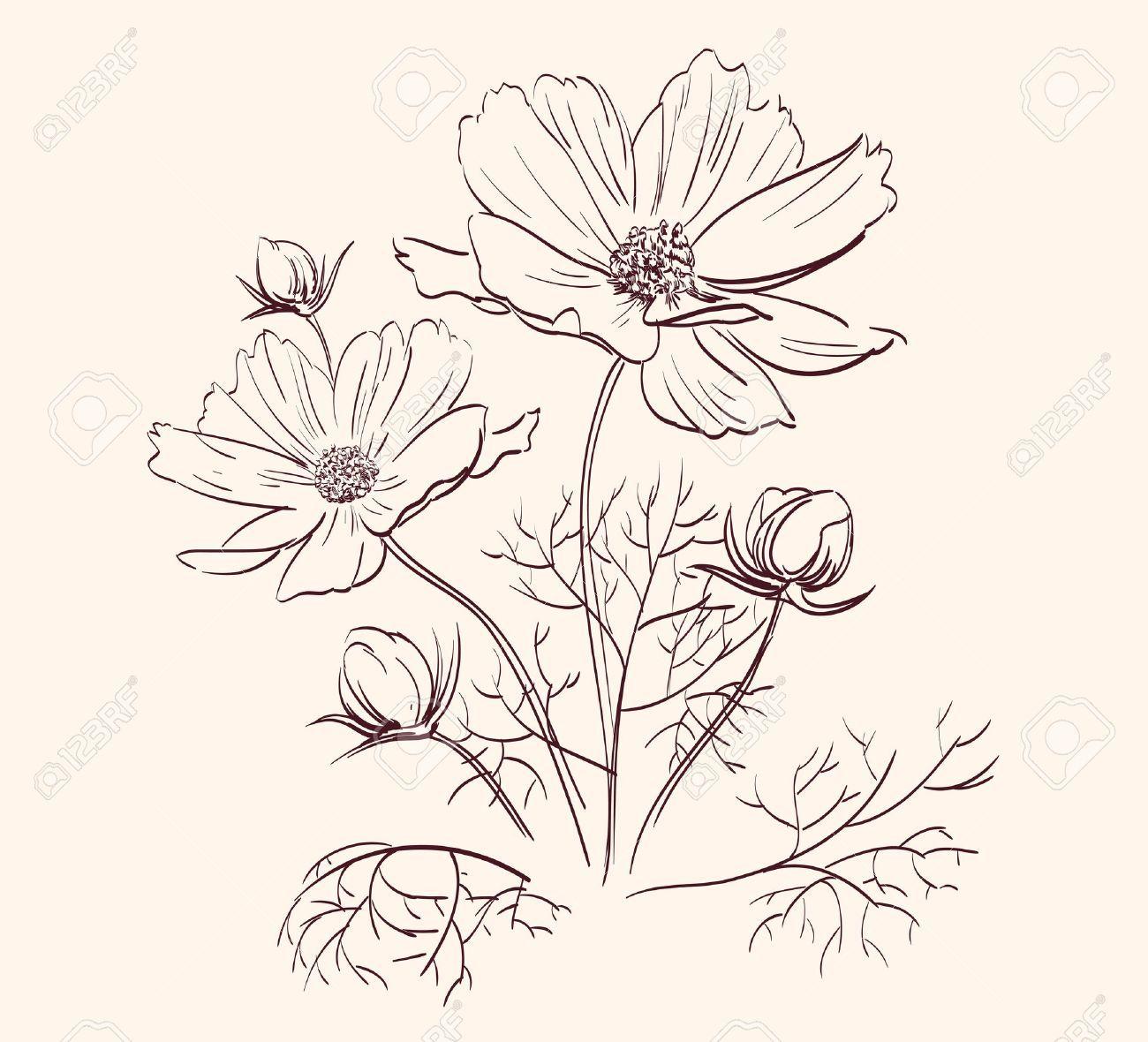 Cute Flower Line Drawing : Beautiful flowers border vector illustration