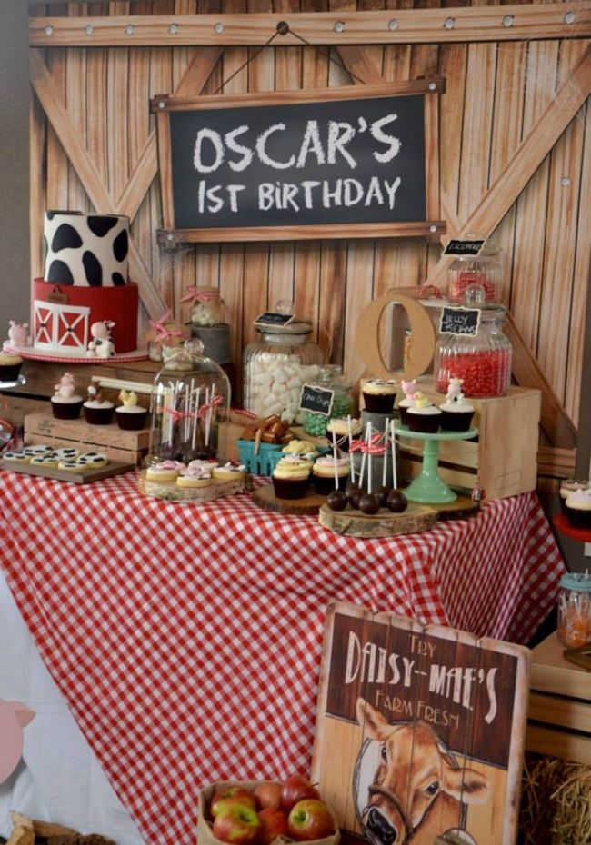 Boys Barnyard Themed Birthday Party Table Decoration Ideas