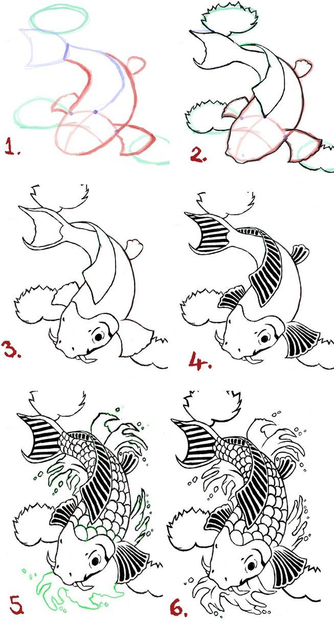 Koi fish drawing steps by wenwecollide on deviantart for Japanese koi fish drawing