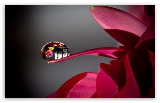 Water Drop Reflection HD desktop wallpaper : High Definition : Fullscreen : Mobile
